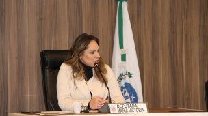 RICARDO ARRUDA FOI O DEPUTADO QUE MAIS GASTOU; MARIA VICTÓRIA, A QUE MENOS GASTOU EM 2019